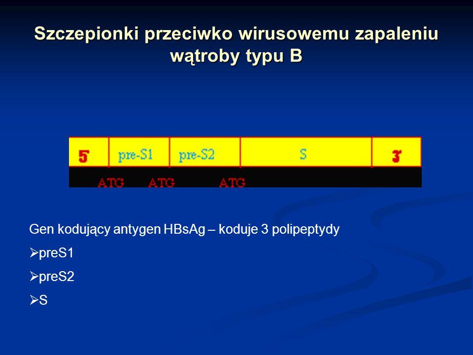 Szczepionki przeciwko wirusowemu zapaleniu wątroby typu B Gen kodujący antygen HBsAg – koduje 3 polipeptydy preS1 preS2 S