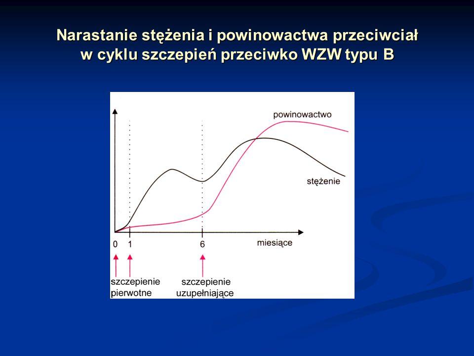 Narastanie stężenia i powinowactwa przeciwciał w cyklu szczepień przeciwko WZW typu B