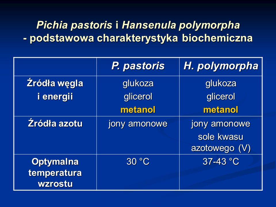 Pichia pastoris i Hansenula polymorpha - podstawowa charakterystyka biochemiczna P. pastoris H. polymorpha Źródła węgla i energii glukozaglicerolmetan