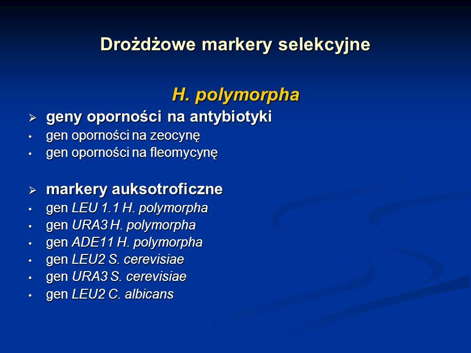 Drożdżowe markery selekcyjne H. polymorpha geny oporności na antybiotyki geny oporności na antybiotyki gen oporności na zeocynę gen oporności na zeocy