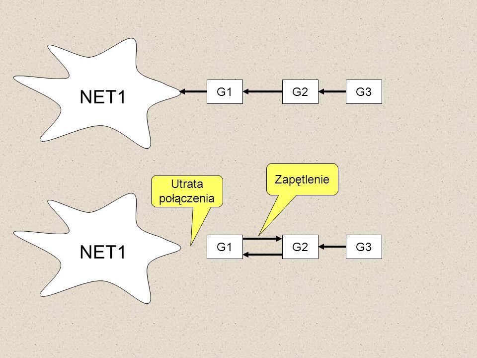 NET1 G1G2G3 NET1 G1G2G3 Utrata połączenia Zapętlenie