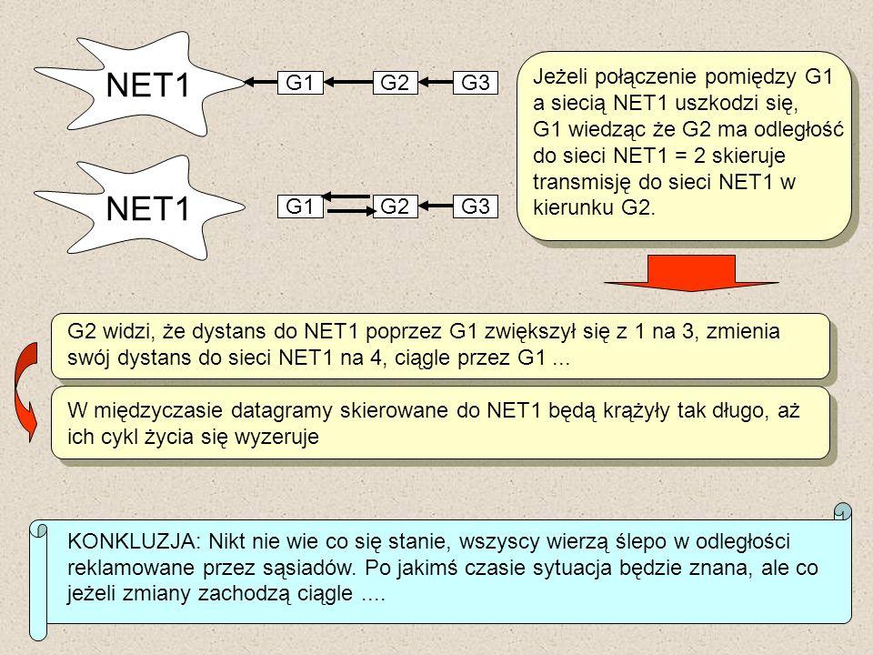 NET1 G1G2G3 NET1 G1G2G3 Jeżeli połączenie pomiędzy G1 a siecią NET1 uszkodzi się, G1 wiedząc że G2 ma odległość do sieci NET1 = 2 skieruje transmisję