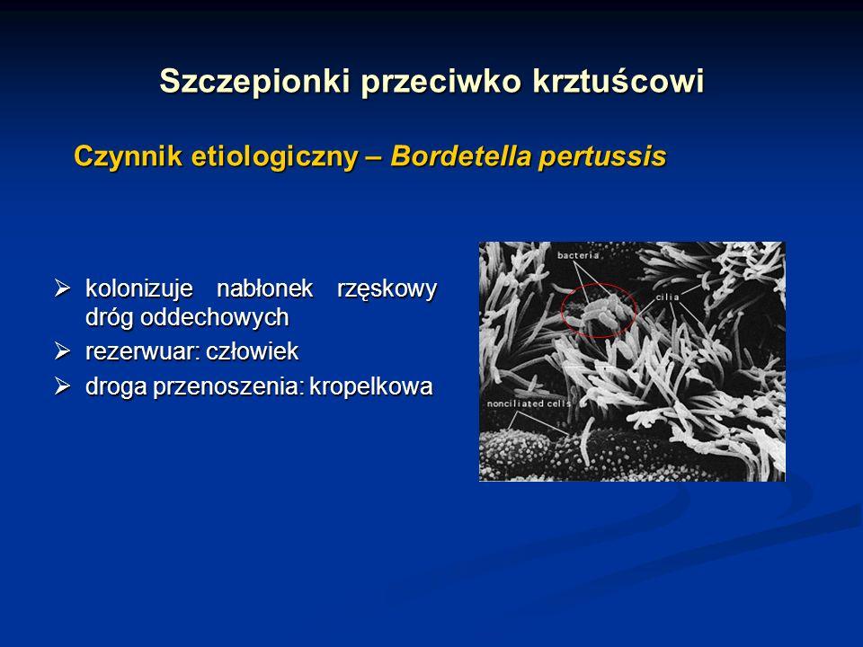 Szczepionki przeciwko krztuścowi Czynniki wirulencji Bordetella pertussis adhezyny adhezyny hemaglutynina włókienkowahemaglutynina włókienkowa pertaktynapertaktyna fimbriefimbrie toksyny toksyny toksyna krztuścowatoksyna krztuścowa cyklaza adenylanowacyklaza adenylanowa toksyna dermonekrotycznatoksyna dermonekrotyczna cytotoksyna tchawiczacytotoksyna tchawicza