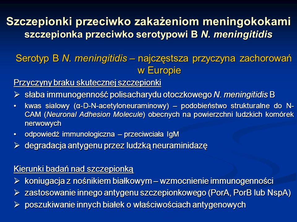 Szczepionki przeciwko zakażeniom meningokokami szczepionka przeciwko serotypowi B N. meningitidis Serotyp B N. meningitidis – najczęstsza przyczyna za
