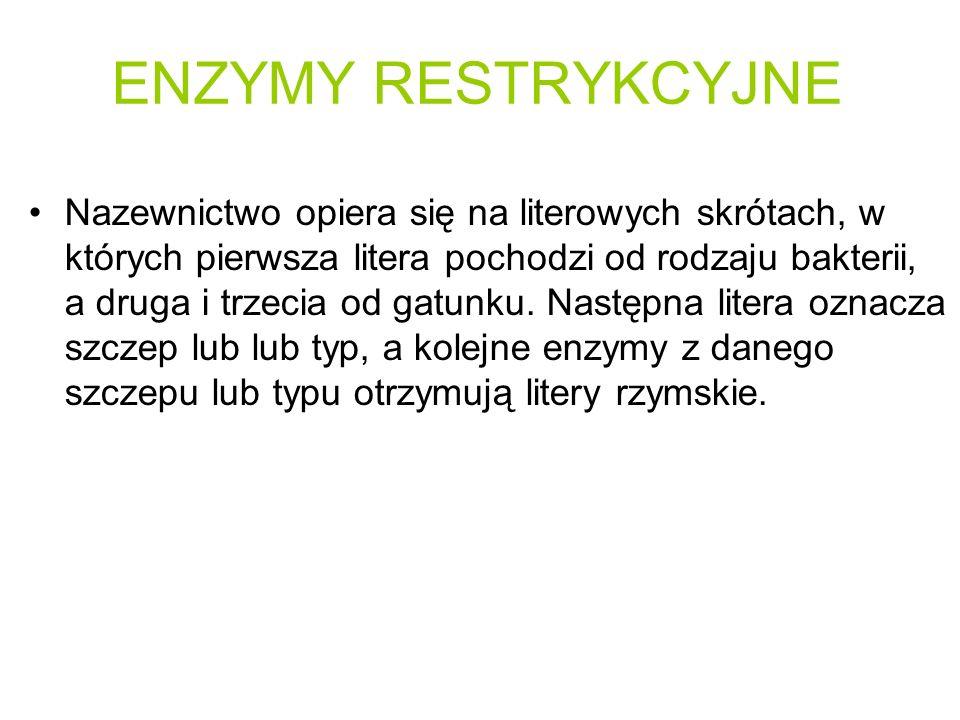 ENZYMY RESTRYKCYJNE Nazewnictwo opiera się na literowych skrótach, w których pierwsza litera pochodzi od rodzaju bakterii, a druga i trzecia od gatunk