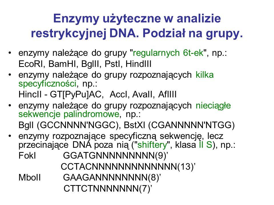 Enzymy użyteczne w analizie restrykcyjnej DNA. Podział na grupy. enzymy należące do grupy