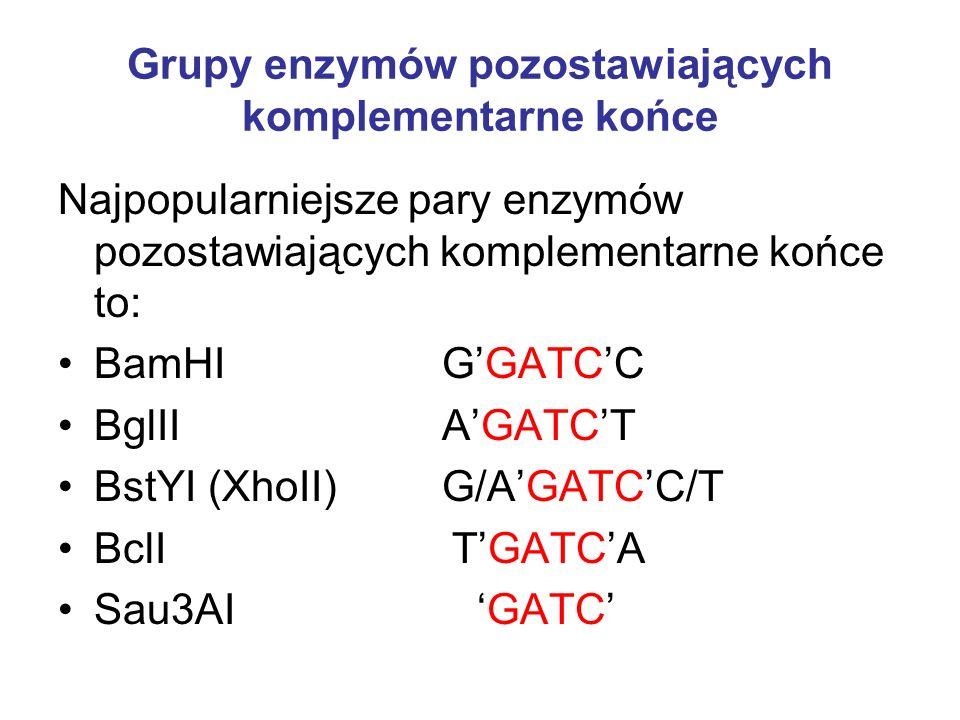 Grupy enzymów pozostawiających komplementarne końce Najpopularniejsze pary enzymów pozostawiających komplementarne końce to: BamHI GGATCC BglII AGATCT BstYI (XhoII) G/AGATCC/T BclI TGATCA Sau3AI GATC