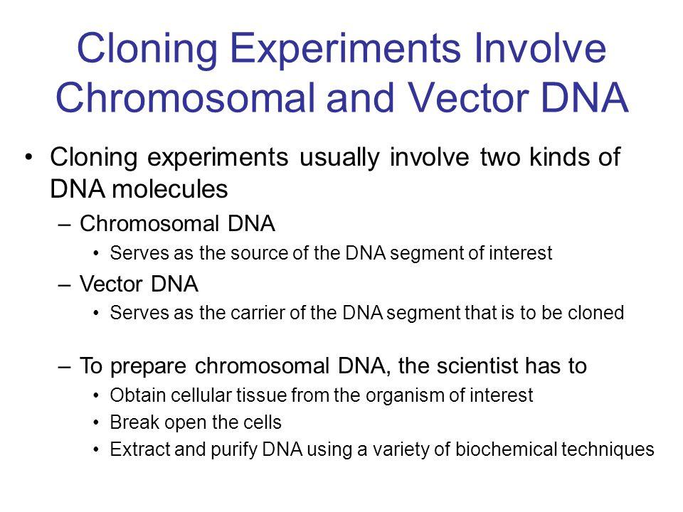 Neoschizomery rozpoznają taką samą sekwencję DNA lecz przecinają ją w inny sposób.