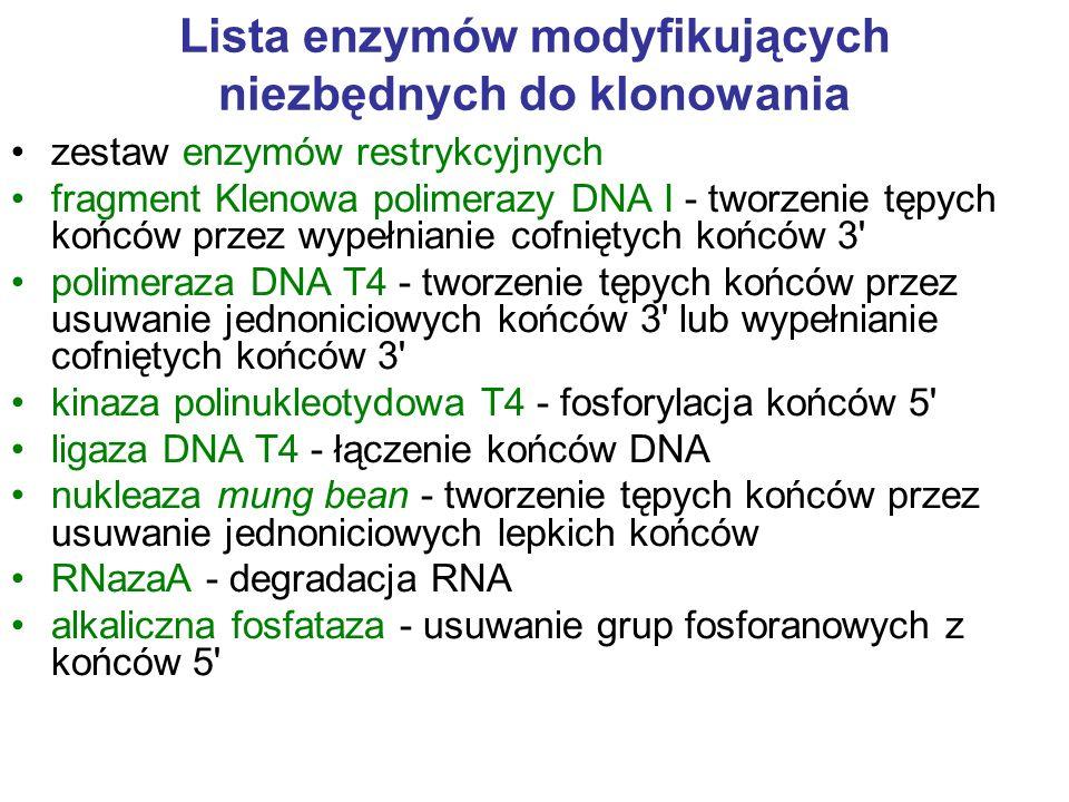 Lista enzymów modyfikujących niezbędnych do klonowania zestaw enzymów restrykcyjnych fragment Klenowa polimerazy DNA I - tworzenie tępych końców przez