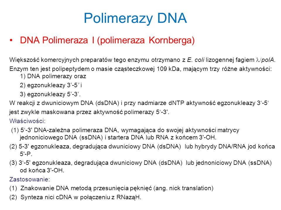 Polimerazy DNA DNA Polimeraza I (polimeraza Kornberga) Większość komercyjnych preparatów tego enzymu otrzymano z E. coli lizogennej fagiem polA. Enzym
