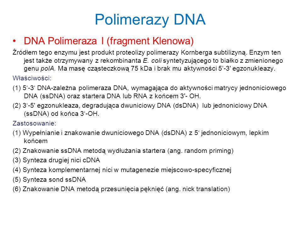 Polimerazy DNA DNA Polimeraza I (fragment Klenowa) Źródłem tego enzymu jest produkt proteolizy polimerazy Kornberga subtilizyną. Enzym ten jest także