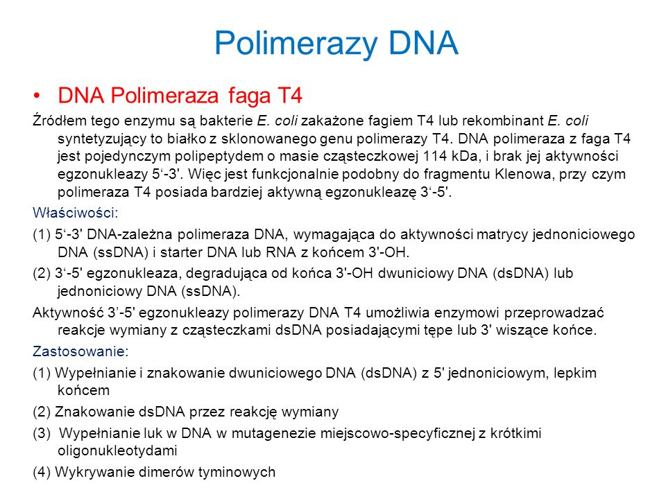 Polimerazy DNA DNA Polimeraza faga T4 Źródłem tego enzymu są bakterie E. coli zakażone fagiem T4 lub rekombinant E. coli syntetyzujący to białko z skl