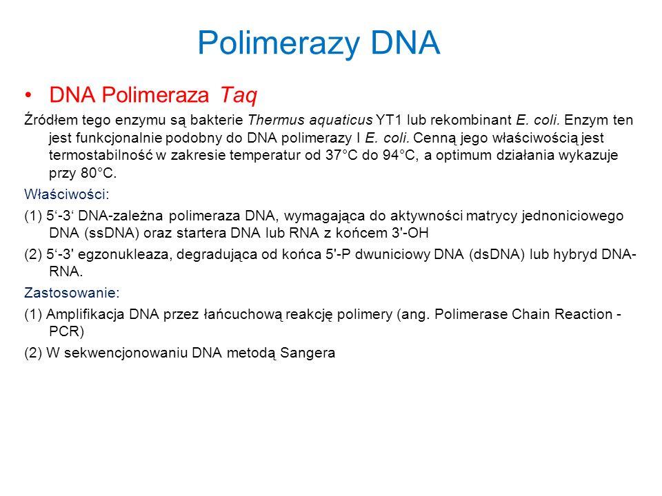 Polimerazy DNA DNA Polimeraza Taq Źródłem tego enzymu są bakterie Thermus aquaticus YT1 lub rekombinant E. coli. Enzym ten jest funkcjonalnie podobny