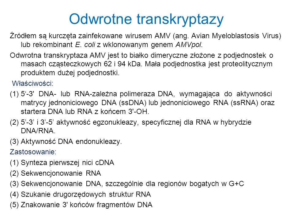 Odwrotne transkryptazy Źródłem są kurczęta zainfekowane wirusem AMV (ang. Avian Myeloblastosis Virus) lub rekombinant E. coli z wklonowanym genem AMVp