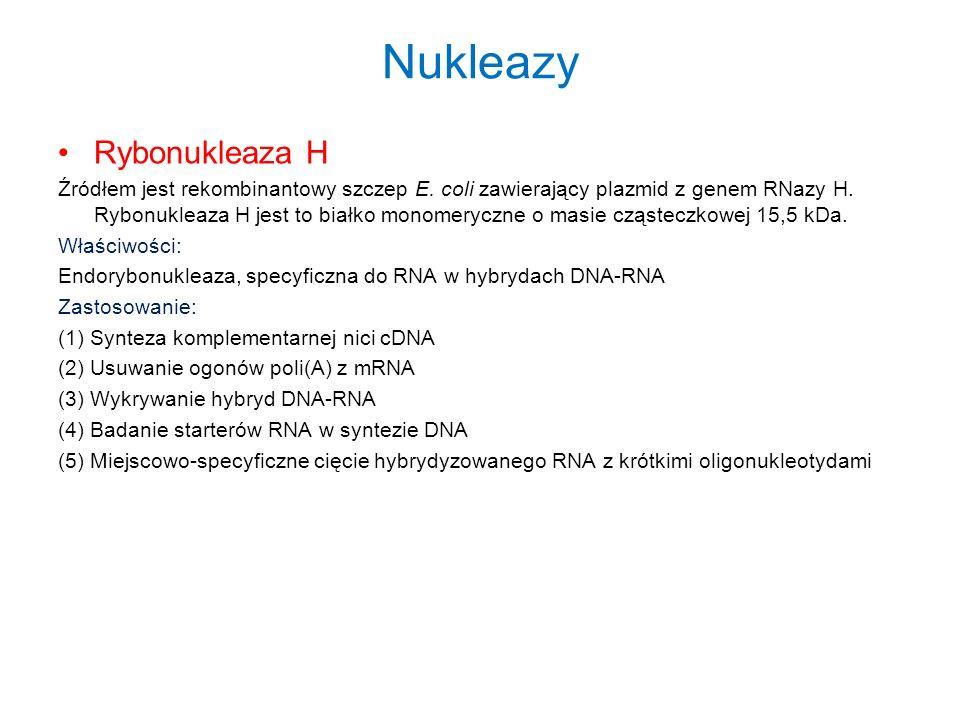 Nukleazy Rybonukleaza H Źródłem jest rekombinantowy szczep E. coli zawierający plazmid z genem RNazy H. Rybonukleaza H jest to białko monomeryczne o m