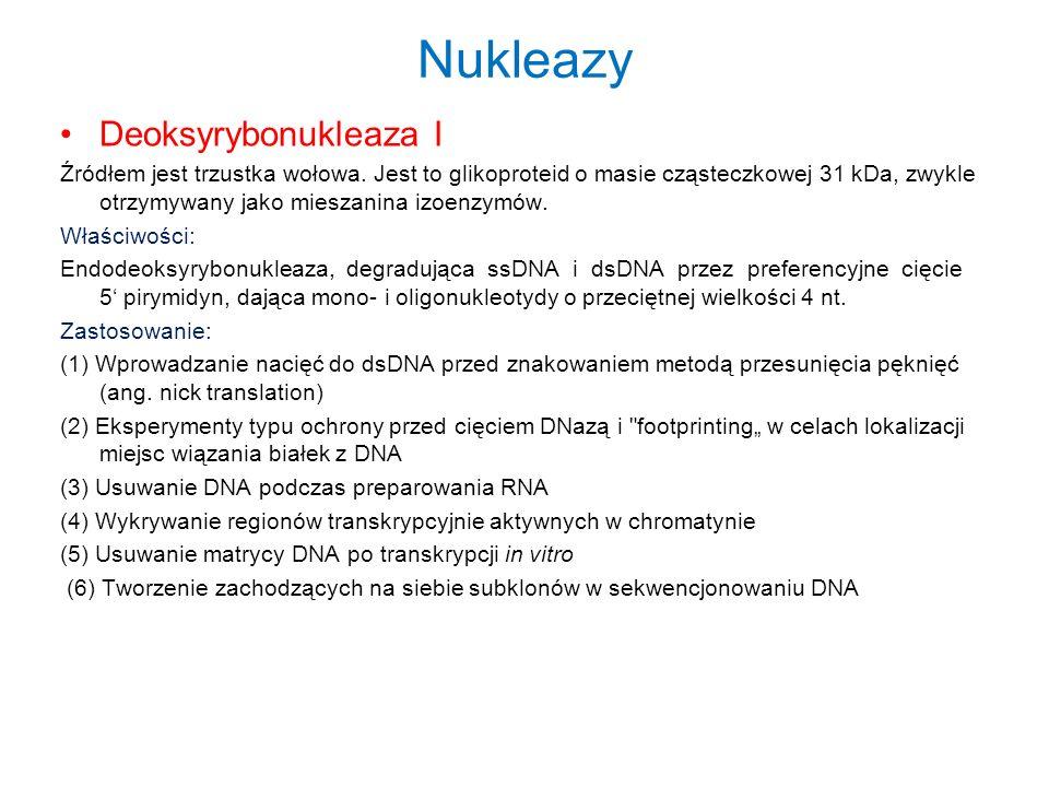 Nukleazy Deoksyrybonukleaza I Źródłem jest trzustka wołowa.