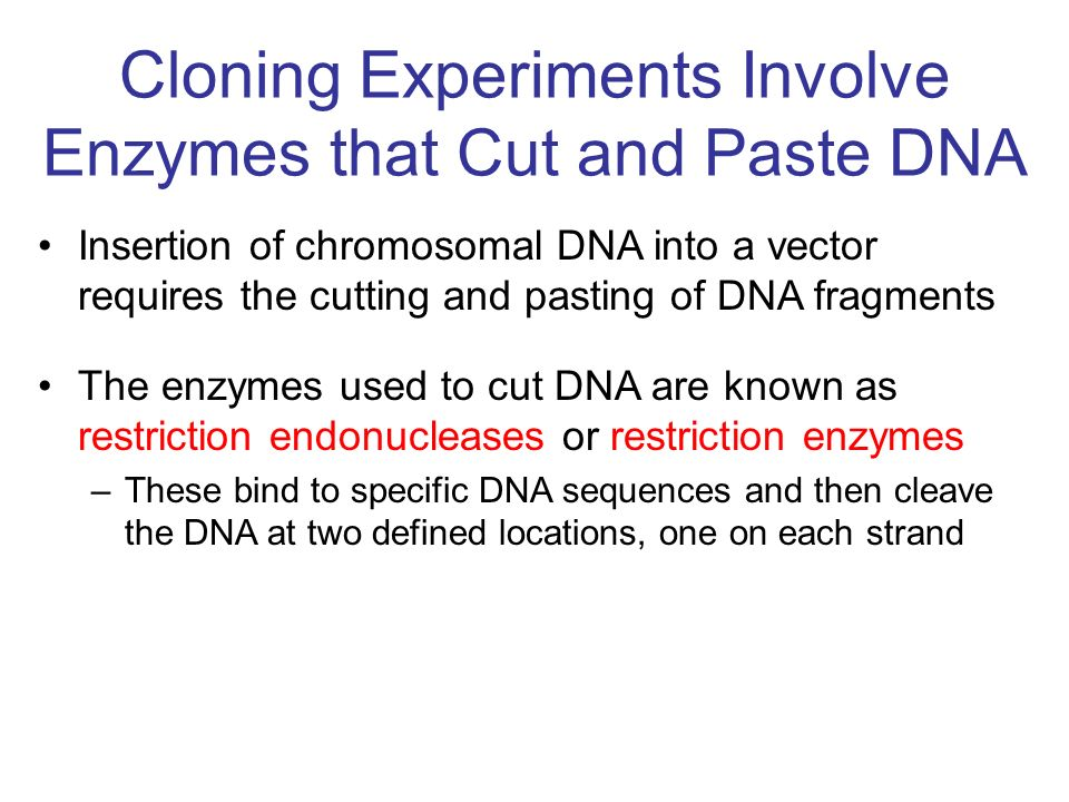 Western blotting is used to identify a specific protein within a mixture of many protein molecules –Again, it was not named after anyone called Western.