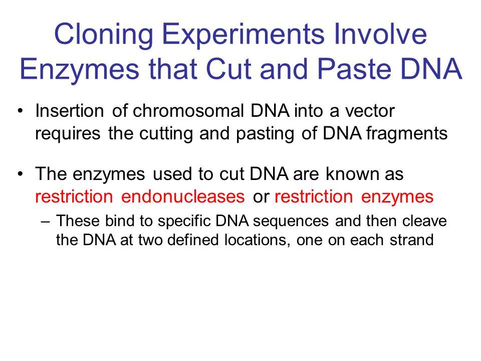 Tworzenie nowych miejsc restrykcyjnych przez łączenie końców DNA powstanie nowego miejsca w sposób zamierzony: (np.
