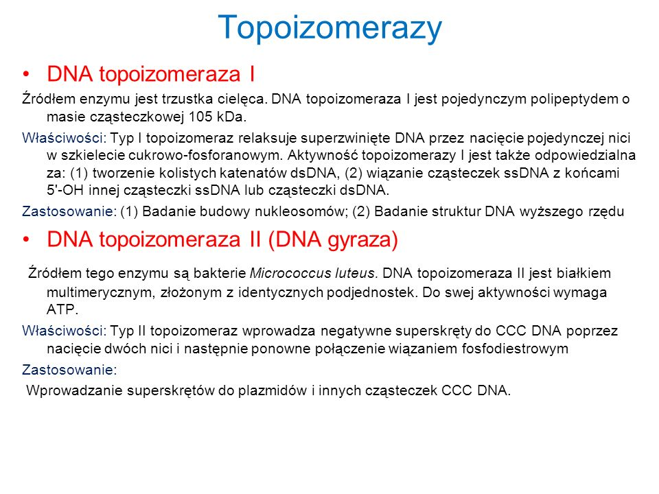 Topoizomerazy DNA topoizomeraza I Źródłem enzymu jest trzustka cielęca. DNA topoizomeraza I jest pojedynczym polipeptydem o masie cząsteczkowej 105 kD