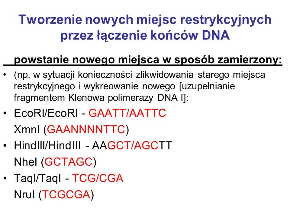 Tworzenie nowych miejsc restrykcyjnych przez łączenie końców DNA powstanie nowego miejsca w sposób zamierzony: (np. w sytuacji konieczności zlikwidowa