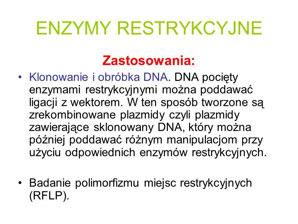 Zastosowania: Klonowanie i obróbka DNA. DNA pocięty enzymami restrykcyjnymi można poddawać ligacji z wektorem. W ten sposób tworzone są zrekombinowane
