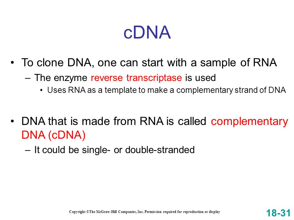 Copyright ©The McGraw-Hill Companies, Inc. Permission required for reproduction or display To clone DNA, one can start with a sample of RNA –The enzym