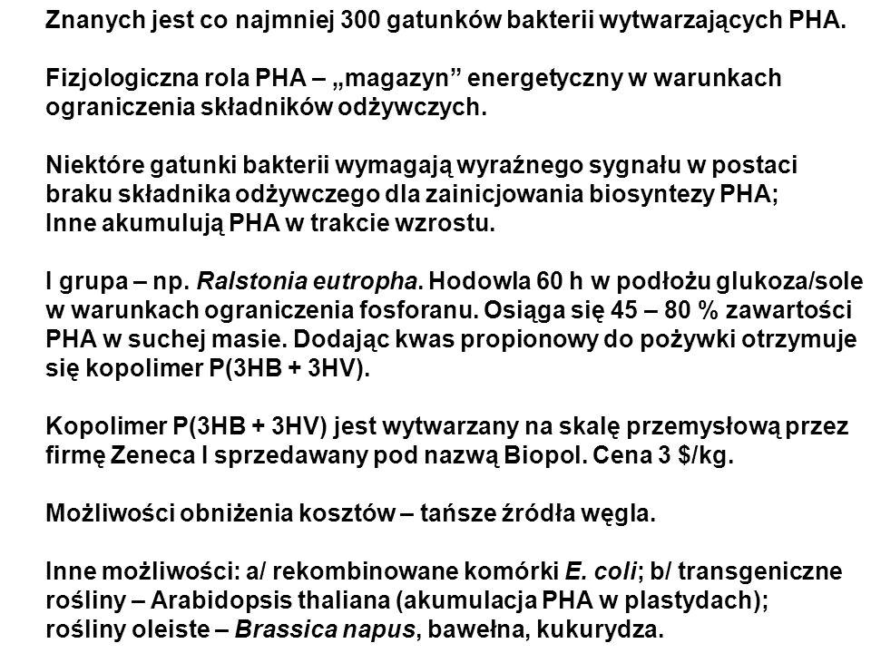 Znanych jest co najmniej 300 gatunków bakterii wytwarzających PHA. Fizjologiczna rola PHA – magazyn energetyczny w warunkach ograniczenia składników o