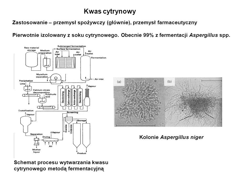 Wzory strukturalne polihydroksykwasów wytwarzanych przez drobnoustroje