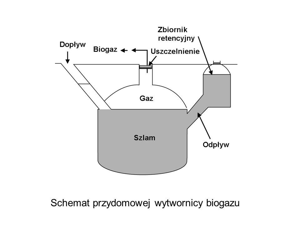 Schemat przydomowej wytwornicy biogazu
