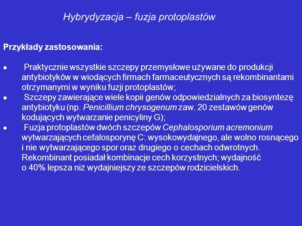 Hybrydyzacja – fuzja protoplastów Metody otrzymywania protoplastów Komórki bakteryjne: gramdodatnie – lizozym; gramujemne – lizozym + EDTA + SDS Komór