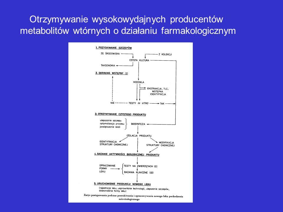 Otrzymywanie szczepów przemysłowych Projektowanie metabolizmu