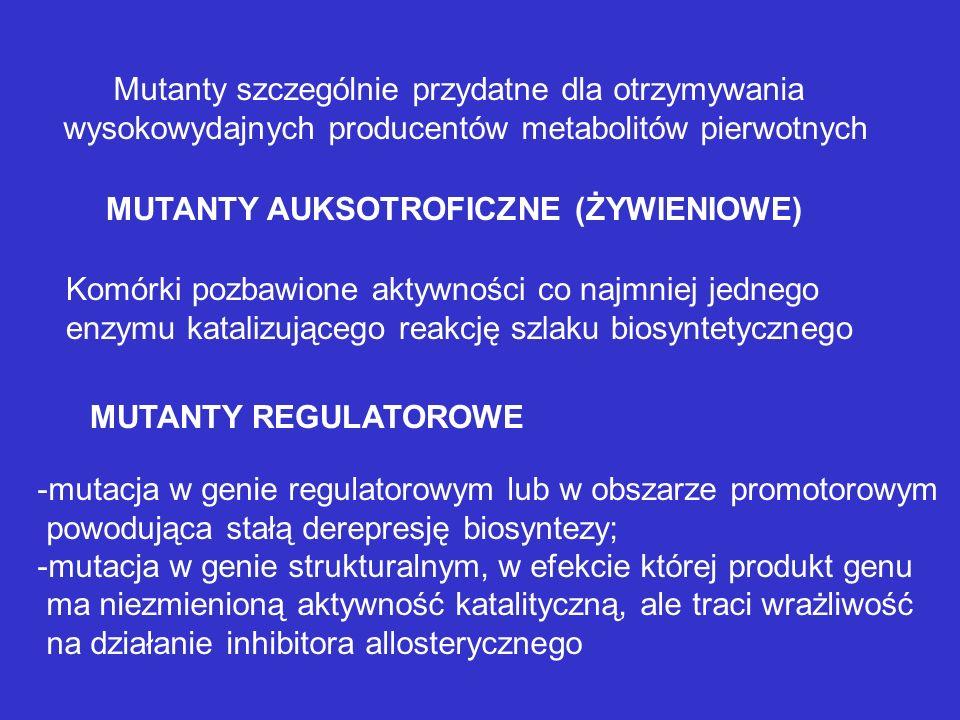Otrzymywanie wysokowydajnych producentów metabolitów pierwotnych Założenia: -dobra znajomość szlaków metabolicznych i mechanizmów kontroli metabolizmu