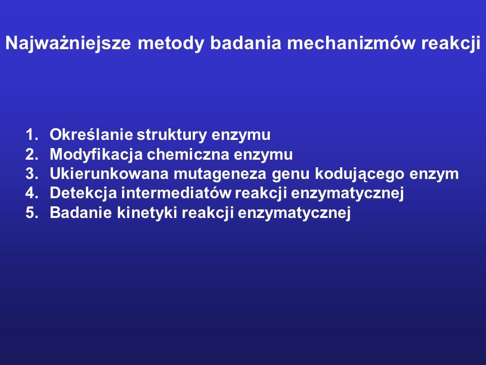 Najważniejsze metody badania mechanizmów reakcji 1.Określanie struktury enzymu 2.Modyfikacja chemiczna enzymu 3.Ukierunkowana mutageneza genu kodującego enzym 4.Detekcja intermediatów reakcji enzymatycznej 5.Badanie kinetyki reakcji enzymatycznej