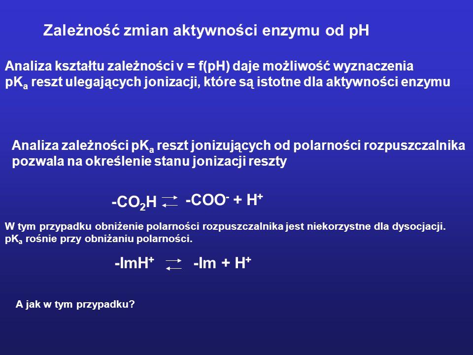 Zależność aktywności enzymu od zmian struktury substratu Papaina – proteinaza cysteinylowa Badania specyficzności substratowej papainy wobec syntetycz