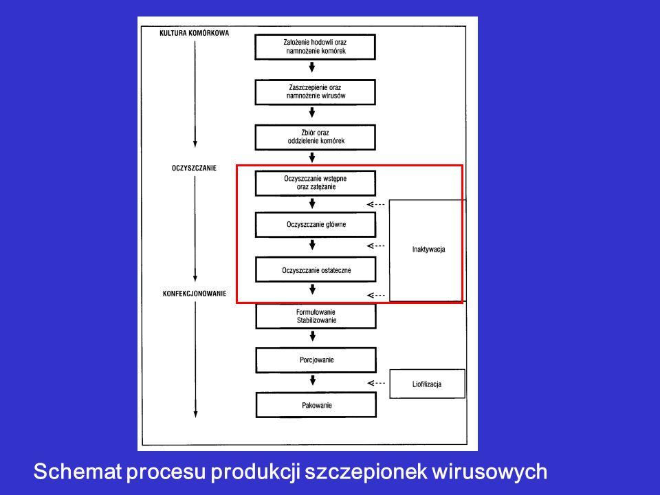 Schemat procesu produkcji szczepionek wirusowych
