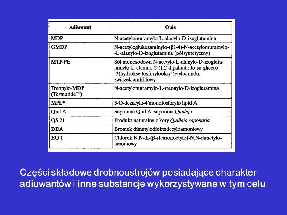 Części składowe drobnoustrojów posiadające charakter adiuwantów i inne substancje wykorzystywane w tym celu