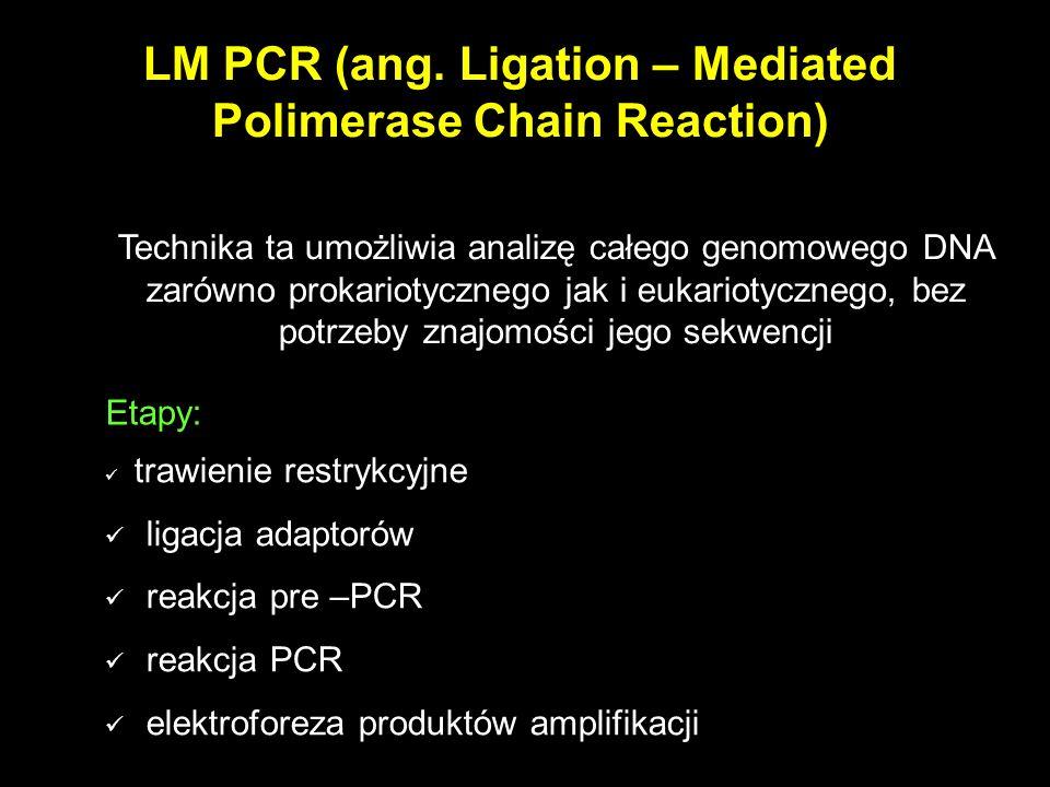 LM PCR (ang. Ligation – Mediated Polimerase Chain Reaction) Technika ta umożliwia analizę całego genomowego DNA zarówno prokariotycznego jak i eukario