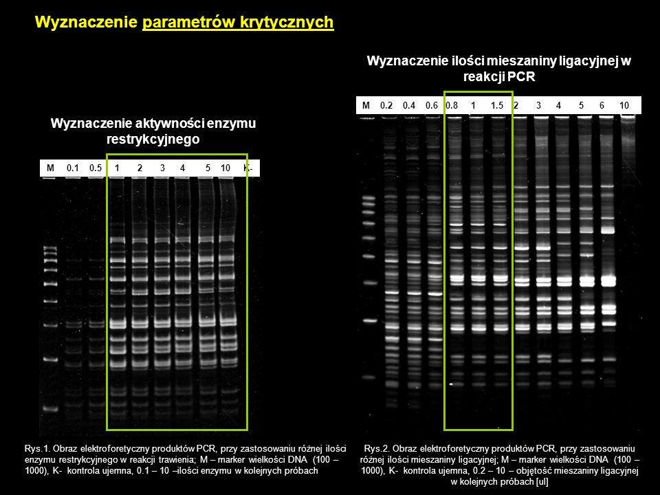 Wyznaczenie parametrów krytycznych M 0.2 0.4 0.6 0.8 1 1.5 2 3 4 5 6 10 Rys.1. Obraz elektroforetyczny produktów PCR, przy zastosowaniu różnej ilości