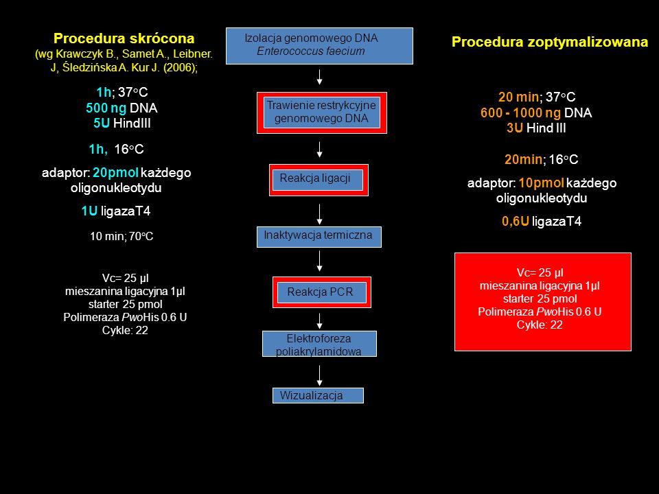 1h; 37°C 500 ng DNA 5U HindIII 20 min; 37°C 600 - 1000 ng DNA 3U Hind III 1h, 16°C adaptor: 20pmol każdego oligonukleotydu 1U ligazaT4 20min; 16°C ada