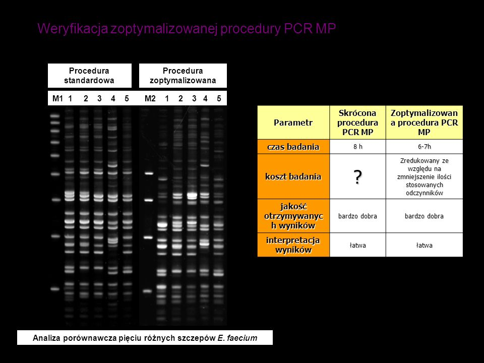 Weryfikacja zoptymalizowanej procedury PCR MP M1 1 2 3 4 5 M2 1 2 3 4 5 Analiza porównawcza pięciu różnych szczepów E. faecium Procedura standardowa P
