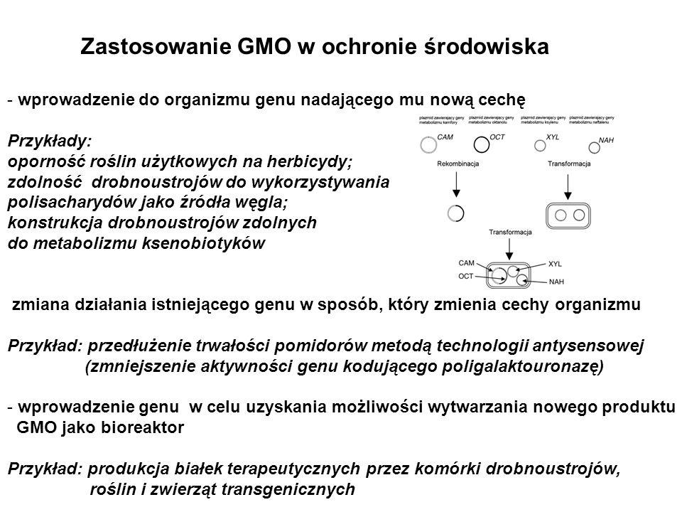 Zastosowanie GMO w ochronie środowiska - wprowadzenie do organizmu genu nadającego mu nową cechę Przykłady: oporność roślin użytkowych na herbicydy; z