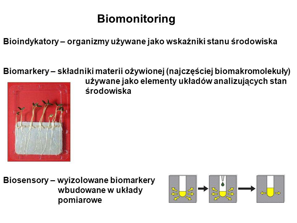 Biomonitoring Bioindykatory – organizmy używane jako wskaźniki stanu środowiska Biomarkery – składniki materii ożywionej (najczęściej biomakromolekuły