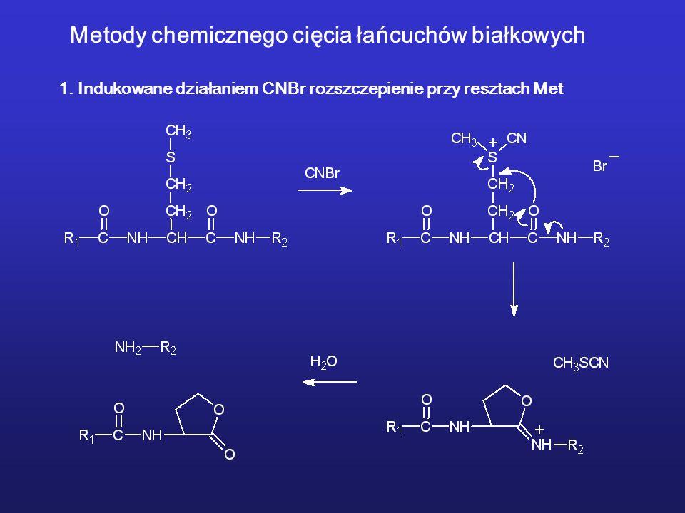 Metody chemicznego cięcia łańcuchów białkowych 1.