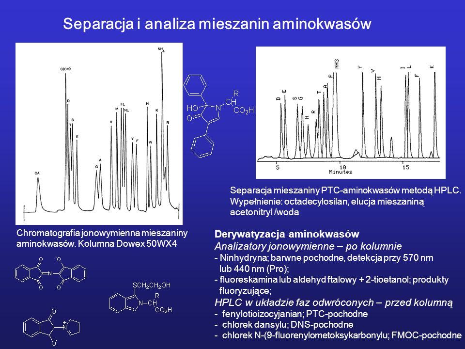 Chromatografia jonowymienna mieszaniny aminokwasów.