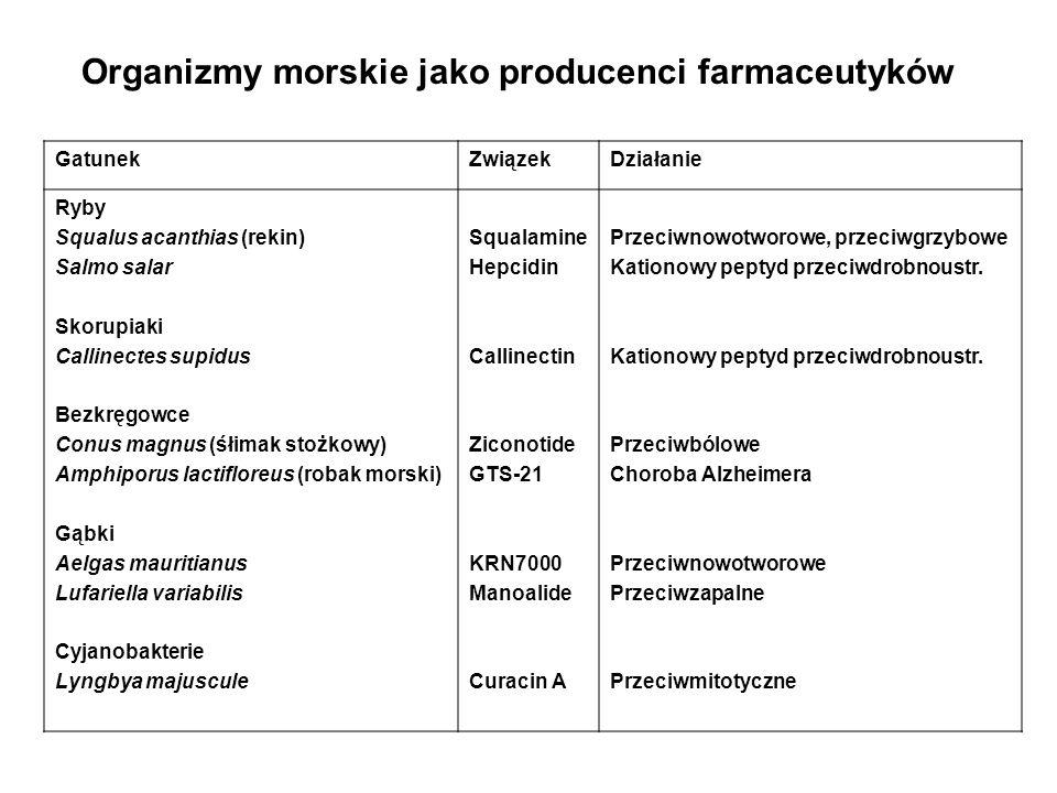 ProduktŹródłoZastosowanie Kwas okadaikowy Mannoalid Polimeraza DNA Vent Aequoryna GFP Fikoerytryna Pseudopterozyna C Antifreeze protein Kwas dokozaheksenowy Glony Lufariella variabilis (gąbka) Bakteria termofilna Aequorea victoria (meduza) Glony czerwone Pseudopterogoria elisabethae (Koralowiec) Flądra Cryptocodinium cohnii (mikroglony) Inhibitor fosfatazy białkowej Inhibitor fosfolipazy A PCR Białko świecące, wiążące Ca Białko świecące Przeciwciała sprzężone Dodatek do kremów Antifreeze Żywność funkcjonalna Organizmy morskie jako producenci innych związków biologicznie czynnych