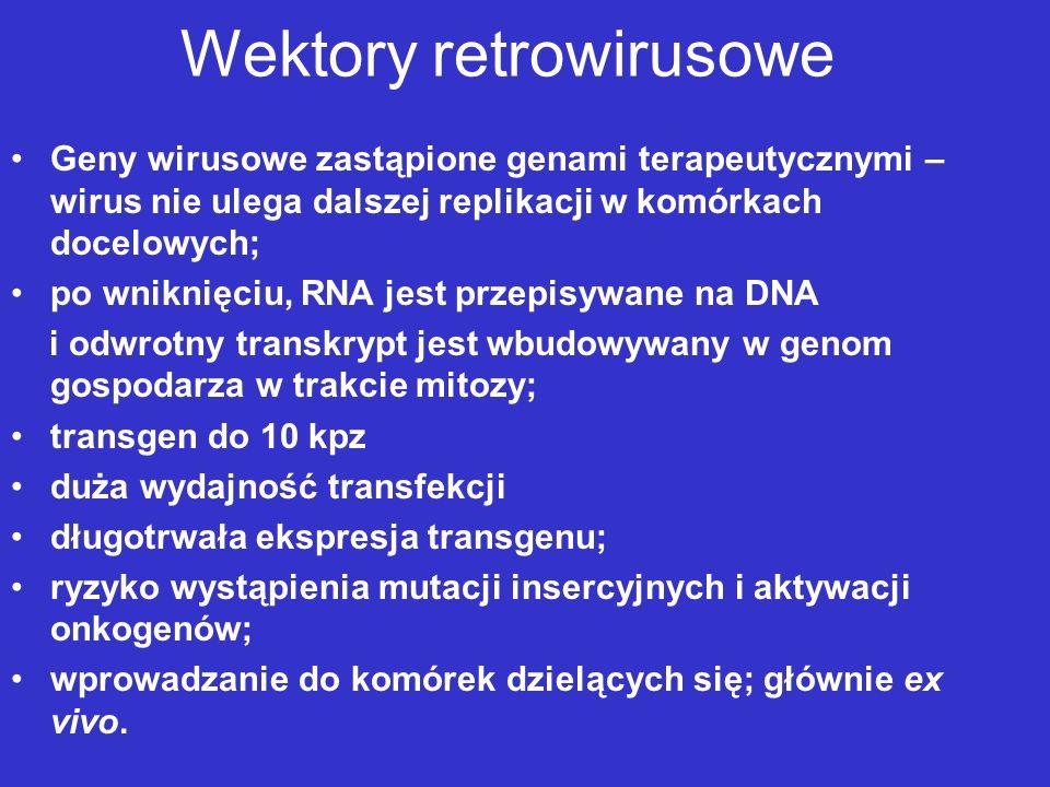 Wektory retrowirusowe Geny wirusowe zastąpione genami terapeutycznymi – wirus nie ulega dalszej replikacji w komórkach docelowych; po wniknięciu, RNA