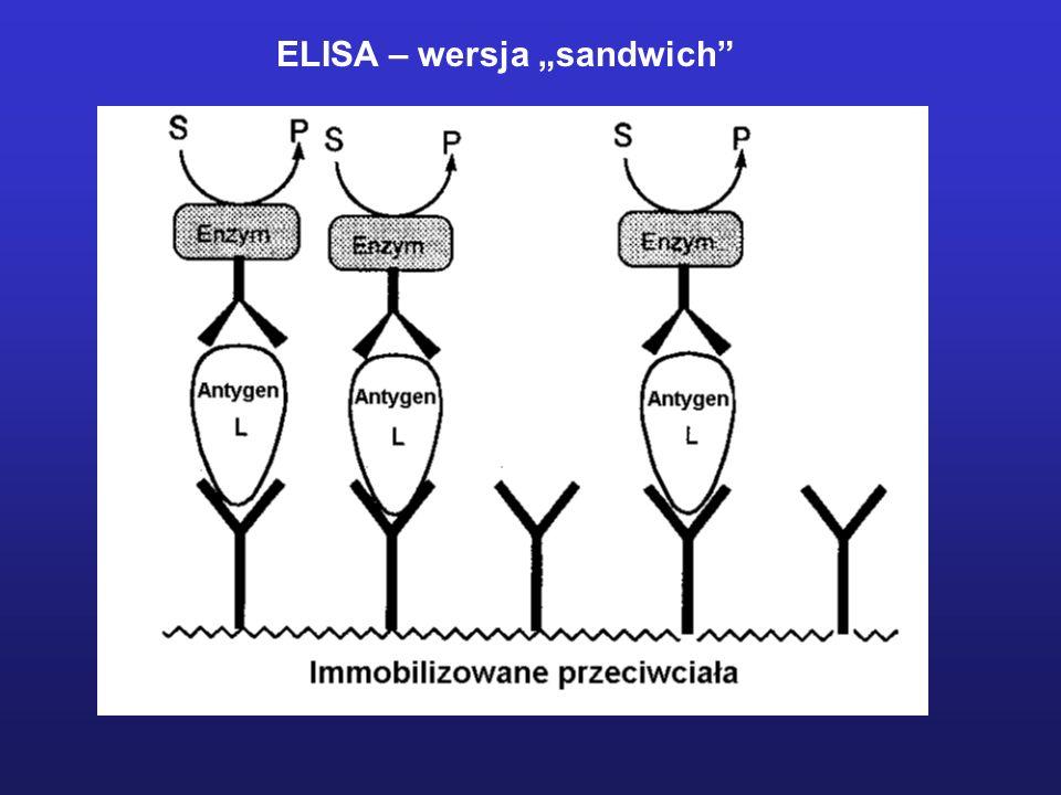 ELISA – wersja sandwich