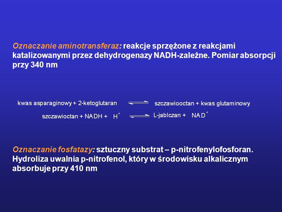 Oznaczanie aminotransferaz: reakcje sprzężone z reakcjami katalizowanymi przez dehydrogenazy NADH-zależne. Pomiar absorpcji przy 340 nm Oznaczanie fos