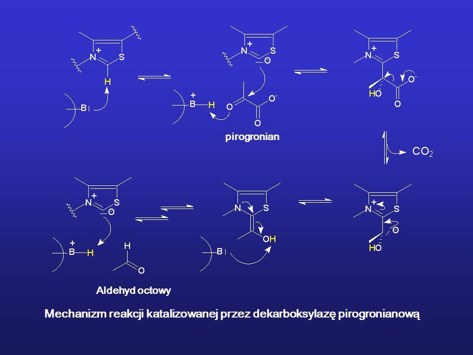 Mechanizm reakcji katalizowanej przez dekarboksylazę pirogronianową pirogronian Aldehyd octowy
