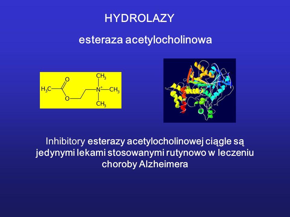 esteraza acetylocholinowa Inhibitory esterazy acetylocholinowej ciągle są jedynymi lekami stosowanymi rutynowo w leczeniu choroby Alzheimera HYDROLAZY